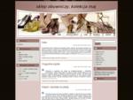 sklep obuwniczy, kolekcja maj