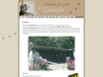 Pensione per gatti Le Ginestre - Castellamonte, Torino