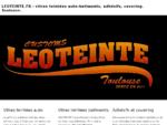 leoteinte. fr