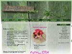Lilleäri - Lillekuller - Värsked lilled internetist gt; lõikelilled, kimbud, pulmad, matused, pä