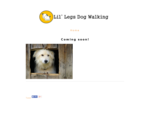 Lil' Legs Dog Walking