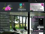L'ODYSSEE - SPA Bien-être - Institut de beauté - Salon de coiffure - VANNES Morbihan Bretagne