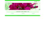 Logisoft AG Überwachung und Vernetzung von Automaten