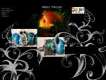 Nemo Perlen