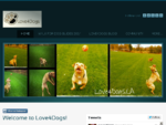 Love4Dogs Pet Services - Love4Dogs - Dog Walking Professionals