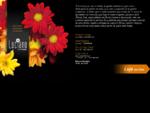 Luciano - Arte e Flores
