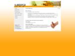 MABESA GmbH Ihr Beratungsunternehmen für ISO Zertifizierung CH 9220 Bischofszell