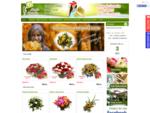 Kwiaciarnia Szczecin - Magia Kwiatów - KWIATY