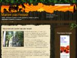 Магия растений. Народные приметы и поверья. Заговоры и обряды связанные с растениями. Талисманы и