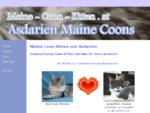 Maine Coon Kitten von Asdarien aus Korneuburg bei Wien | Katzen-Babies mit Stammbaum