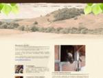 Scuola di equitazione Cerveteri - Ristorante e Pizzeria Cerveteri - Roma - Ranch Ferretti