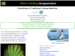 Mark Fielding Acupuncture