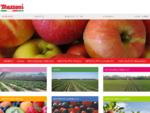 Frutta e verdura fresca, surgelata, biologica, vivai - Mazzoni Group