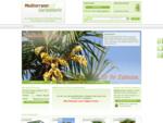 Mediterraner Gartenmarkt | Online Shop für hochwertige Pflanzen, exklusive Gartenmöbel und traumha