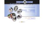 מיריקל ספיריט - אילוף כלבים, מאלף כלבים, מזון כלבים