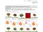 Bloemist Flowers. nl | Moederdag bloemetje versturen naar je moeder, Boeket voor moederdag sturen