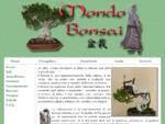 Mondo Bonsai