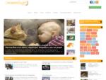 Το online σπίτι για τα ζώα