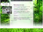 Magnétiseur - Accueil - Val d'oise - Eaubonne