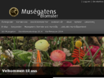 Hjem - Interflora Muségatens Blomster