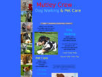 Mutley Crew Dog Walking and Pet Care Sydney Inner West and Inner Suburbs