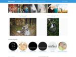 Vestuvių fotografijos svetainė, vestuvių fotografai - mywed. lt
