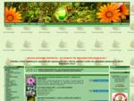 Centrum ogrodnicze - Najtańsze nasiona, cebulki kwiatowe, kłącza, byliny, storczyki i inne cieka