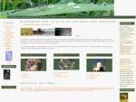 Naturaliste Amateur