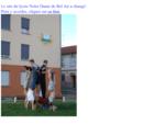 Accueil du site - Lycée Notre Dame de Bel Air - Tarare - 04. 74. 05. 02. 49