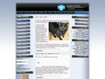 nettunense veterinaria - Home