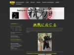 Ninjutsu, Kampfkunst, Kampfsport, Burgenland, Ronald, Högn, Dojo