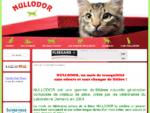 Nullodor® Litière pour chat