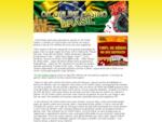 OK Online Casino Brasil - Site de Cassino Online com Bônus