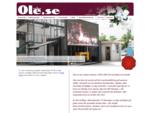 Ole. se I reklambyrå, tryckeri, skyltar, banderoller, fotografering, hemsidor, Östersund, Åre