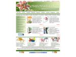 Omeopatia omeopata medicina alternativa e benessere omeopatico omeopatici terapia omeopatica