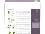 עומר הגליל עומר הגליל, ארומתרפיה, מוצרים טבעיים, שמנים אתריים, שמנים צמחיים