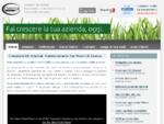 Creazione Siti Internet, Posizionamento Nei Motori di Ricerca
