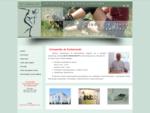 Ortopedia, chirurgia urazowa Wrocław-dr Czesław Kalinowski - Szablony CMS