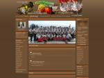 Strona Młodzieżowej Orkiestry Dętej z Sierpca oraz grupy tanecznej działającej przy orkiestrze.