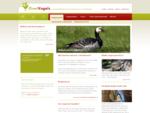 Over Vogels - Home   Informatie over verschillende vogelsoorten en vogelziektes