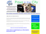 Wellington Dog Training, Dog Grooming, Doggy Daycare - Paws in the City