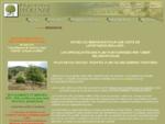 Peacute;piniegrave;re Wollner culture et vente de plants truffiers.