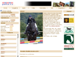 Peta. cz Fotogalerie koni - Jezdeckeho sportu