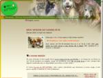 PETSITTING. COM. PT - Serviço Personalizado de Apoio Domiciliário a Animais de Estimação