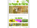 Le Peuple de l'herbe - Macrophotographies et fonds d'écran - Fleurs, insectes, papillons, abeille