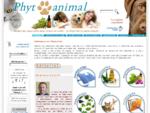 Phytanimal | Médecines naturelles pour chiens et chats un Praticien à votre écoute