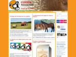 Piensos Covaza es una empresa dedicada a la alimentación de caballos. Ofrece piensos de calidad pa