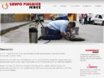 Grupo Plagasur | Control de plagas, Insonorizacion, Ignifugacion, Venta de productos quimicos,