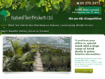 Auckland Plant Hire | Office Plants | Living Art | Wedding Plants | Event Hire