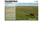 POLODIGITALE. IT Web Design, Siti Internet, E-commerce, Web marketing, Registrazione domini